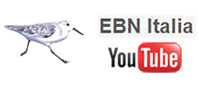 Segui EBN ITALIA su Youtube