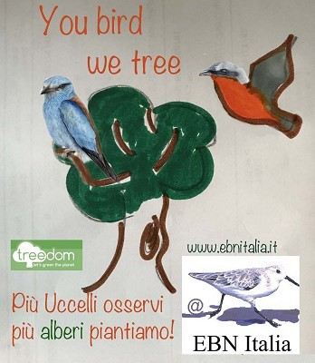 You bird, we tree