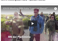 VIDEO XXVIII meeting di EBN...
