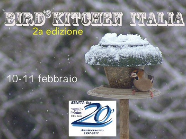 Bird´s Kitchen 2017