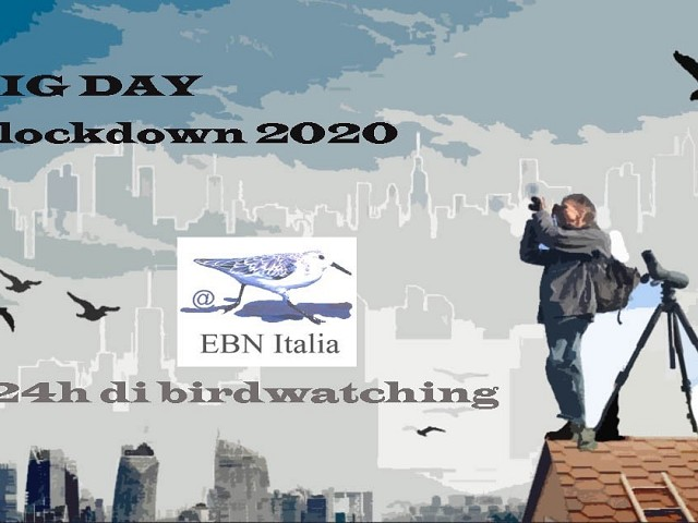 24ore BIG DAY #lockdown 2020